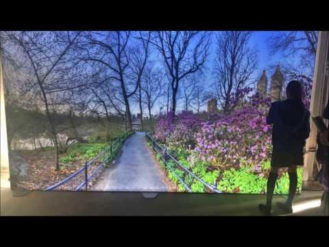 Renton Prep | Field Trip to 9 evenings art, science & technology | 9e2