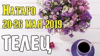 ТЕЛЕЦ - таро прогноз 20-26 мая 2019 года НАТАРО.
