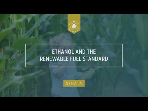Ethanol and The Renewable Fuel Standard