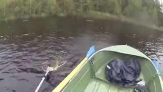 Рыбалка,Щука затопила лодку,Шок,Сенсация,Россия
