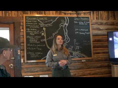 Grizzly Bear Viewing At Brooks Falls Alaska USA (part 2)