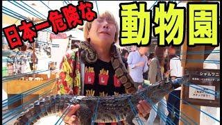 日本一危険な動物園に行ったら失神寸前!!誓約書が必要らしい!