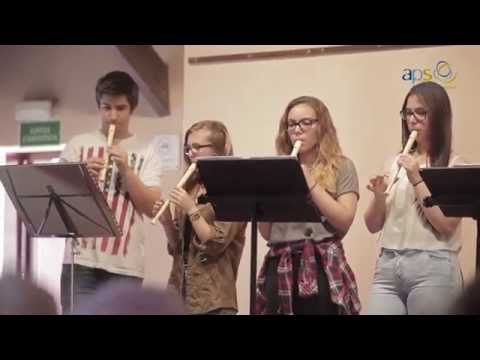 Experiència APS - Musicavis