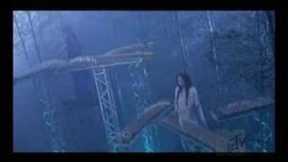 Cover images [PV]Rin' - Sakitama~幸魂~