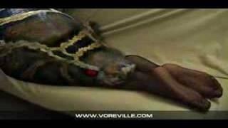 Sexy LEGS - Sexy Videos - Snake Swallows Prey