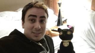 LUXOR Brand Kitty Cat