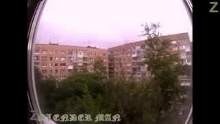 Монстр палочник в России