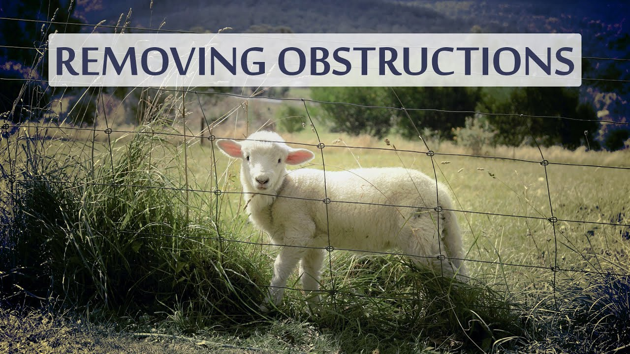 An AI Learned To See Through Obstructions!