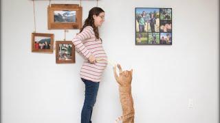 2 MIN. PREGNANCY TIMELAPSE
