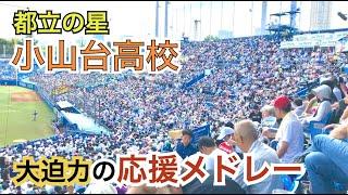 2019 都立小山台高校 決勝戦での大迫力の応援歌メドレー (高校野球)
