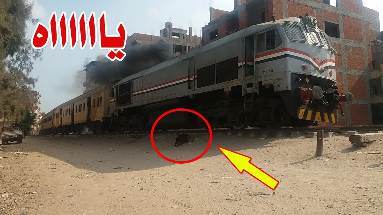 بالفيديو لحظات النهايه بين عجلات القطار