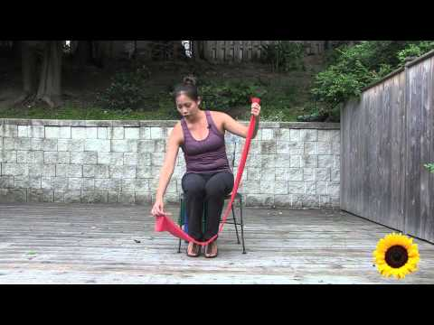 Seated Theraband Exercise for Seniors