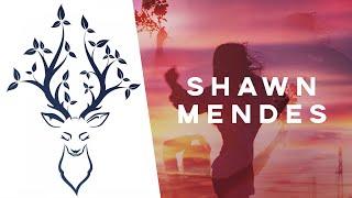 Baixar Shawn Mendes - Fallin' All In You