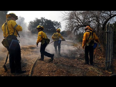 أعنف حرائق في تاريخ كاليفورنيا تقتل 42 شخصا وترامب يعلنها منطقة -كارثة كبرى-…  - نشر قبل 29 دقيقة