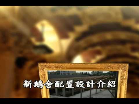 非開放式禽舍示範場影片介紹-吳錦城(城興畜牧場)