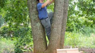 Building A Tree House That Let's A Young Boy's Imagination Soar