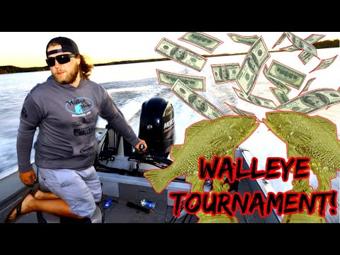 First EVER Walleye Tournament! | So Many Fish!