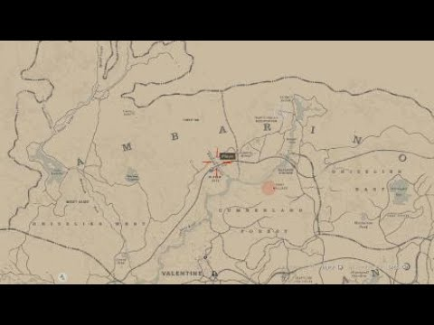 Red Dead Redemption 2 Nevada Hat & what to do if you can't pick up the  letter