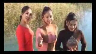 Shahrizoda Darya taxkin