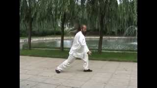 Yang Stlye Tai Chi: Yang Jianhou's Transmission (Part 1-3/6)