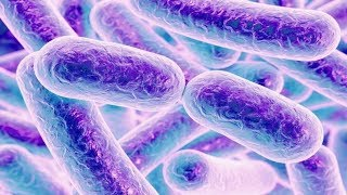 The Antibiotic Resistance Crisis | Health | Science News