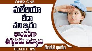 మలేరియా లేదా చలి జ్వరం తొందరగా తగ్గడానికి ఈ చిట్కాలు వాడండి | Part 2 | Health Tips | Telugu Tips