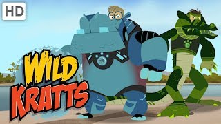 Wild Kratts 🦛 Hippos vs. Crocodiles! | Kids Videos