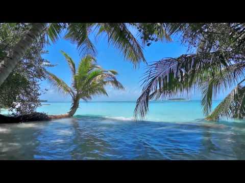 Einschlafmusik - Flöte, Meer und die Vögel - Entspannungsmusik