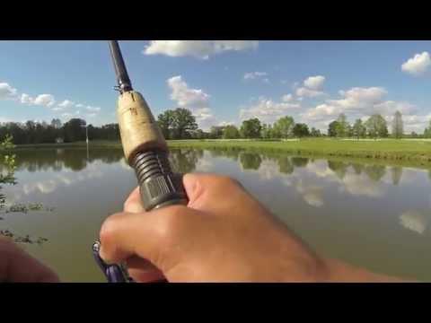 Carp Fishing in Ohio