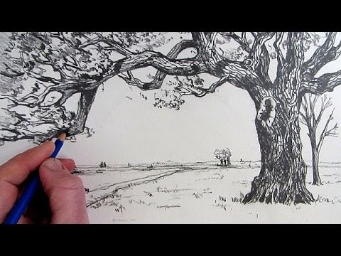 How to draw a tree narrated step by step