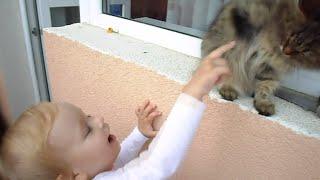 Алиса показывает кошку Масю, музыкальную книжку и дождик за окном !