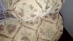 Bed Bugs after Treatment with Stryker Pest Control