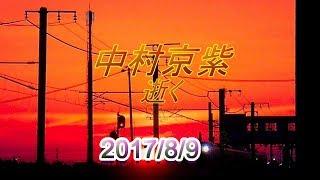 【訃報】中村京紫氏(歌舞伎俳優) 2017年8月9日