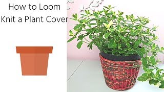 Loom Knit Plant Cover