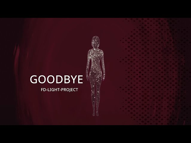 Goodbye by FD-LIGHT-PROJECT (A short story about life)