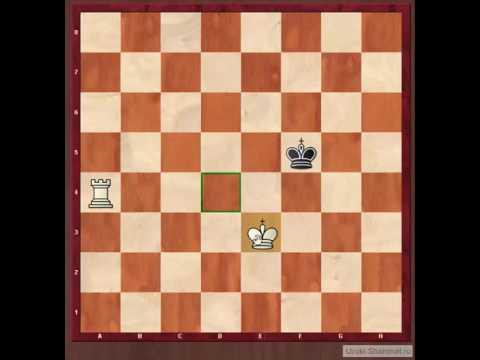 Шахматы для начинающих. Мат ладьей и королем