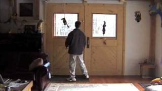 Carriage House Doors Renovate a Daylight Basement