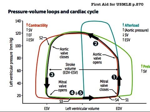 USMLE Cardiovascular System 5 - Physiology (Function curve, Cardiac Cycle, Heart Sounds, Etc.)