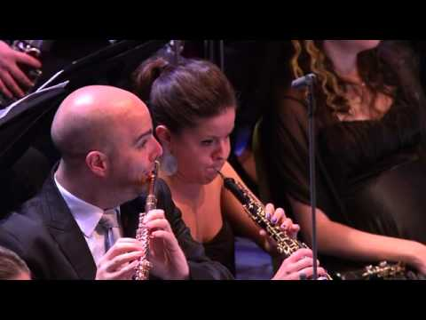 BBC Proms 2014 08 29 Barenboim Conducts the West Eastern Divan Orchestra PDTV x264 JIVE