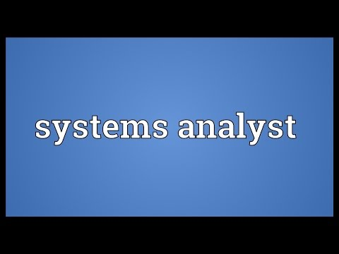 Systems analyst Meaning