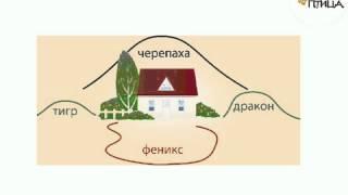 Как дом влияет на Вашу удачу(Ольга Гамбург Бесплатный 5 дневный тренинг., 2014-03-13T17:58:06.000Z)