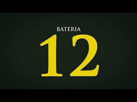 BATERIA 12