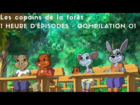 Les copains de la forêt - 1 heure d'épisodes - compilation 01
