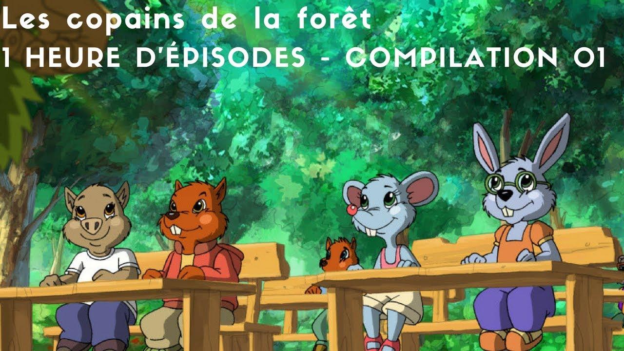 Les Copains De La Foret 1 Heure D Episodes Compilation 01 Youtube