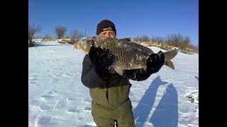 Зимняя рыбалка на реке Амур. Дарга. Ловим щуку. #8