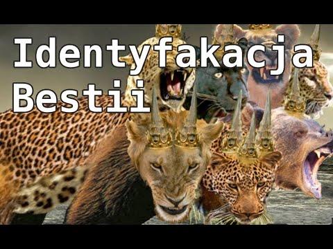 Download Znamię Bestii - Identyfikacja Zwierzęcia - ZB3