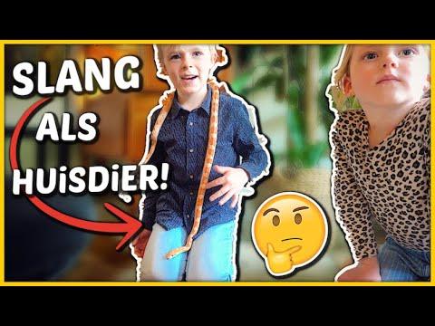 LUAN WiL EEN SLANG ALS HUiSDiER! 😱   Bellinga Vlog #1679