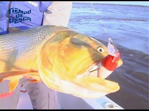 Tiempo de Pesca en Santa Elena