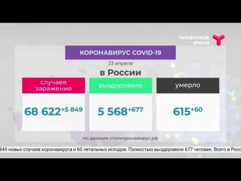 Новые случаи COVID-19 / Тюменская область