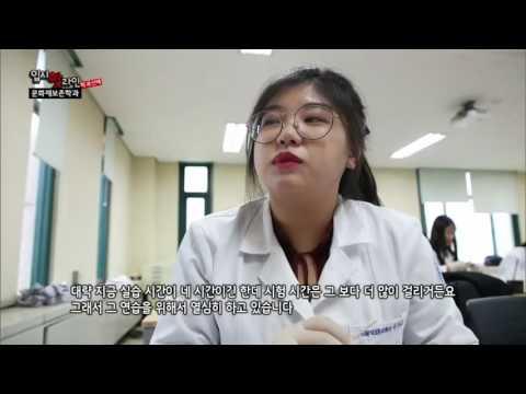 EBS 입시 핫 라인(학과선택) - 문화재보존학과